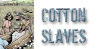 cotton slaves